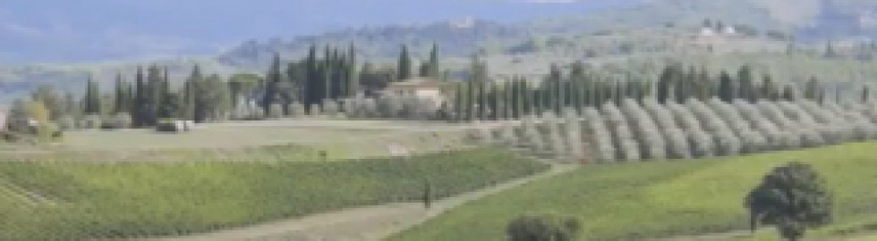 Spot KMZERO TOURS – Slow Travel Tuscany